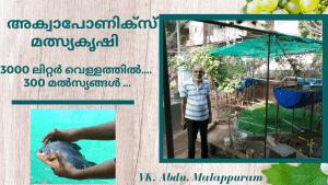 Aquaponics Fish Farm of VK Abdu In Malappuram