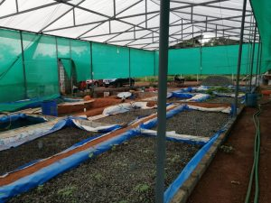 Nylon Sheet Grow bed for Aquaponics Fish farming