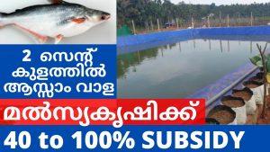 Subsidy for Fish farming in Kerala