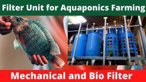 Filter for Aquaponics fish farming