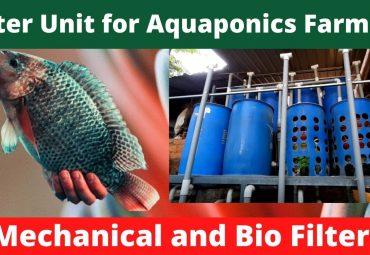 How to Setup a Filter Unit for Aquaponics Fish Farming