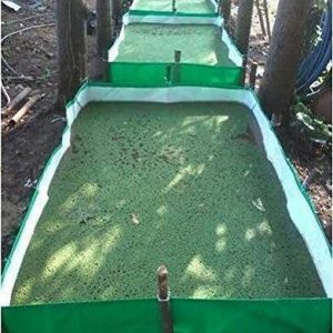 Azolla Growing Bed 450 GSM HDPE