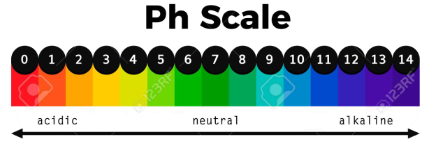 PH Scale Vector